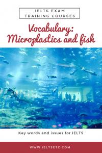 IELTS Vocabulary topic microplastics