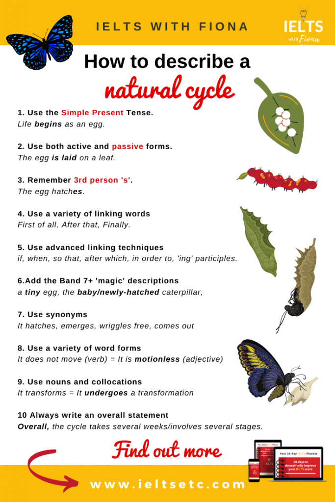 IELTS How to describe a natural cycle