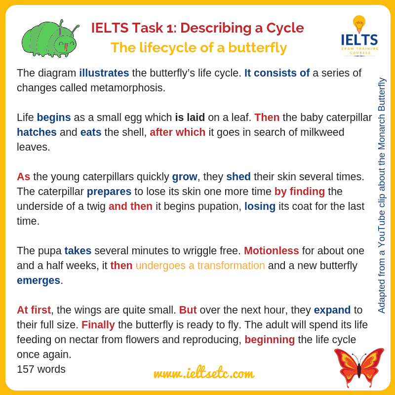 How to describe a cycle for IELTS Writing Task 1